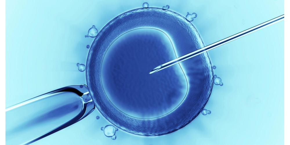 How successful is ivf?