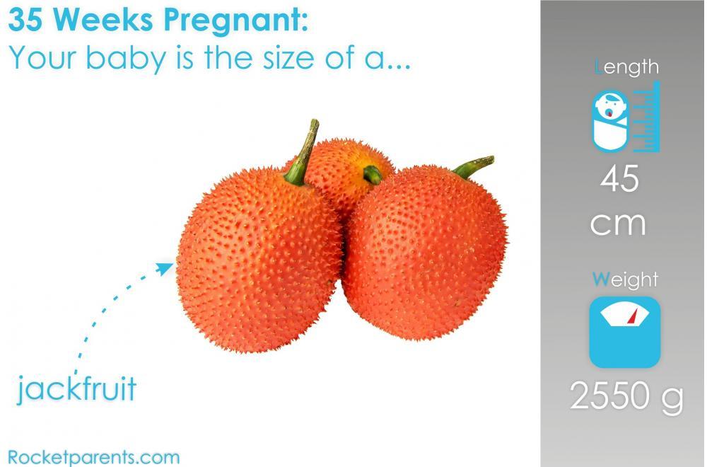 35 Weeks Pregnant: Symptoms, Fetus Ultrasound, Belly Photos