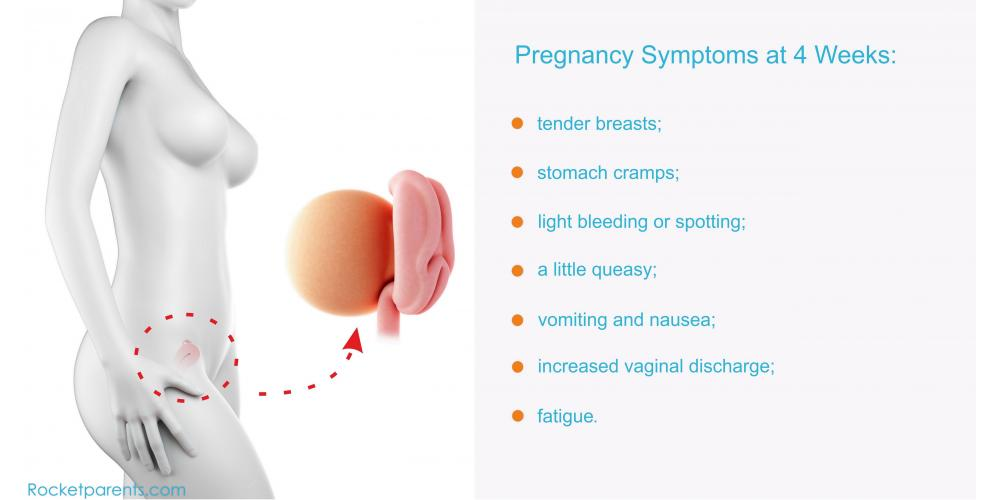 Ectopic Pregnancy Babycentre Uk